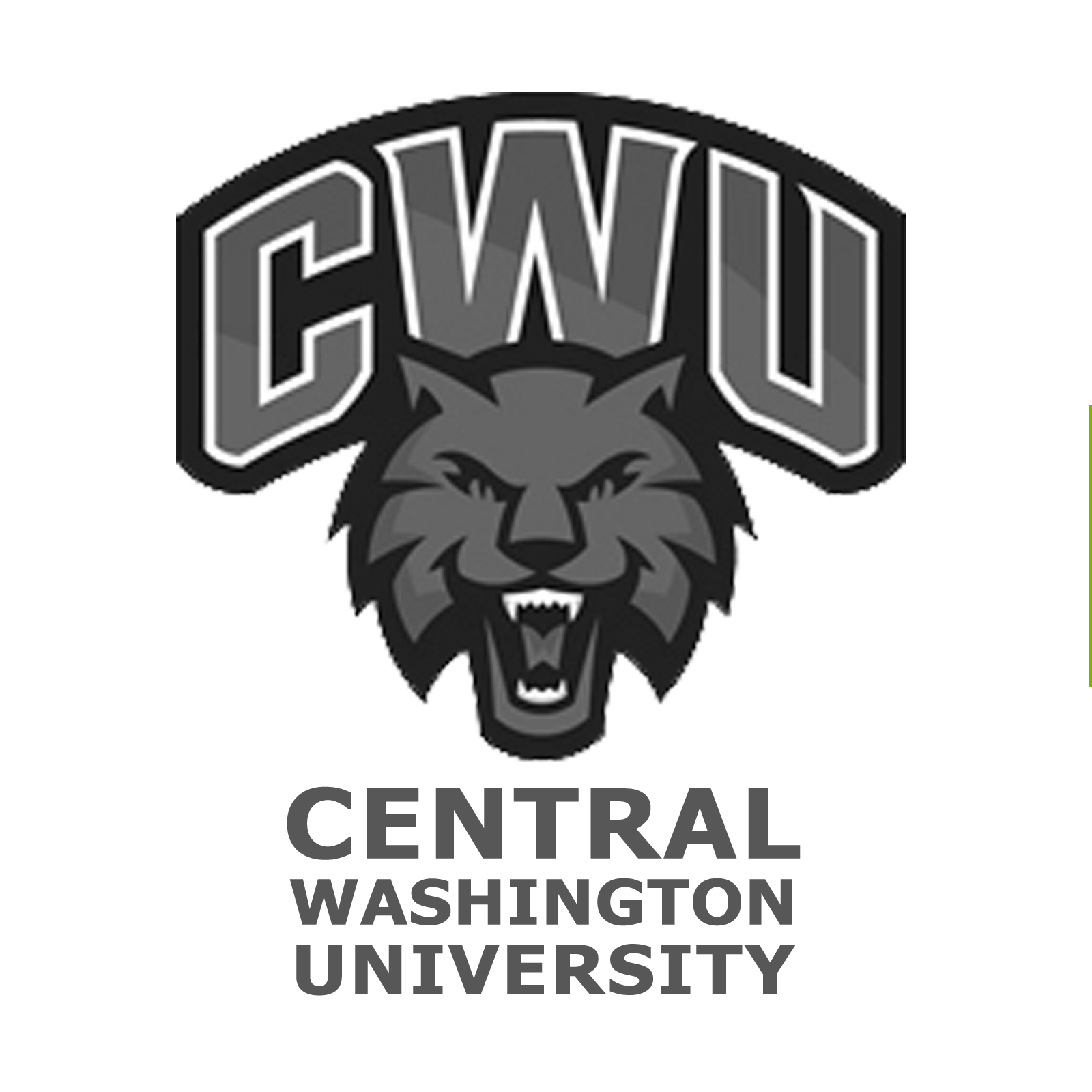 Central Washington University Challenge Coin CWU Challenge Coin