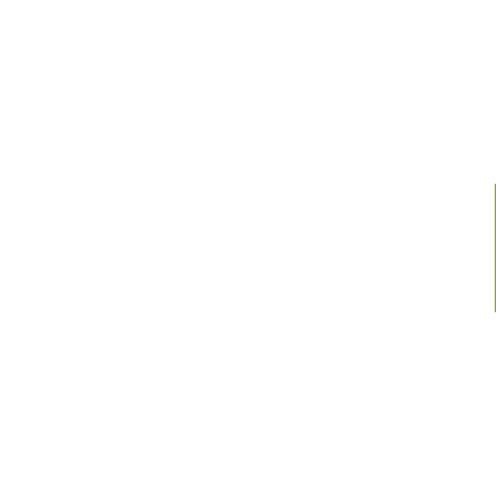 Wal-Mart Challenge Coin WalMart Challenge Coin